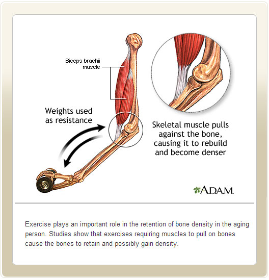 Bone Building Exercises